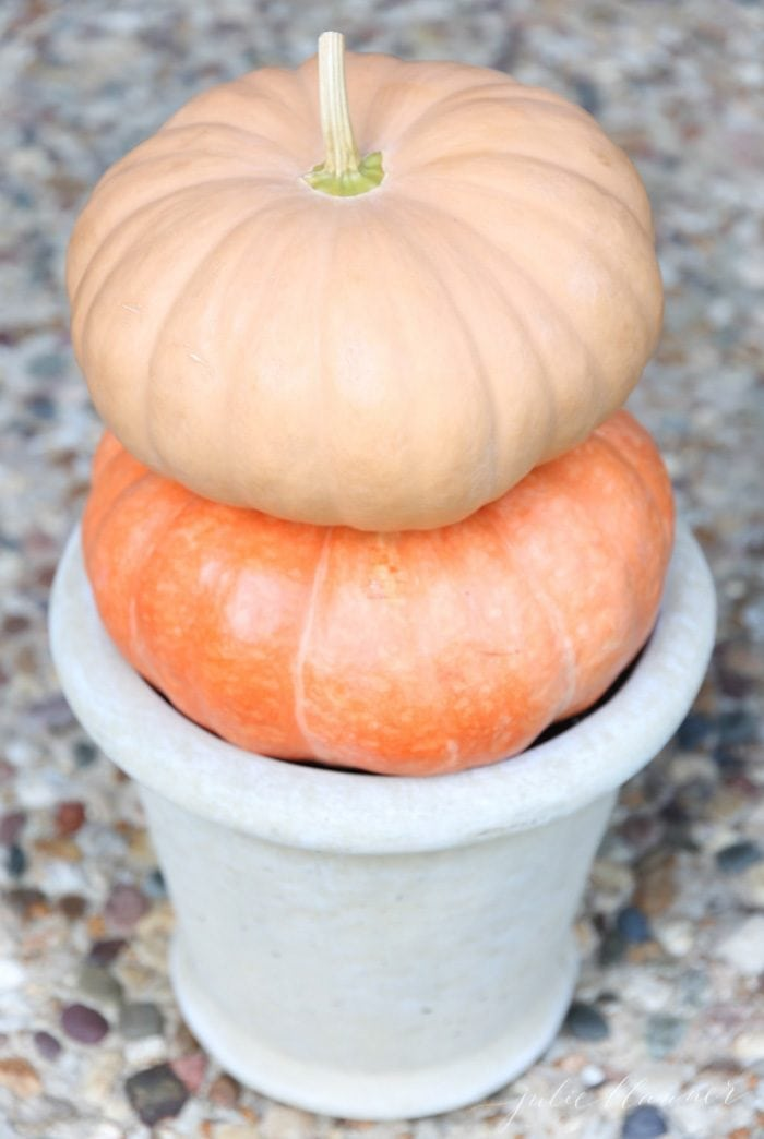 Easy fall decoration ideas - gourd topiary