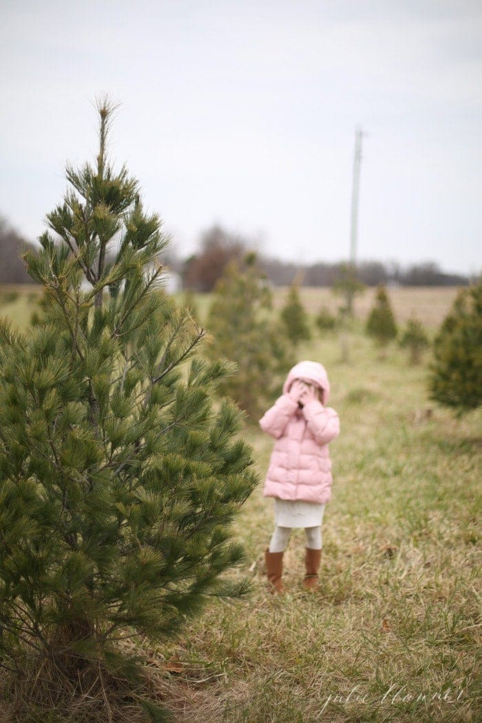 tree-farm-3