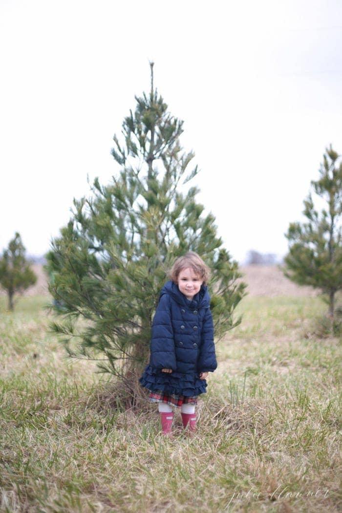 tree-farm-4