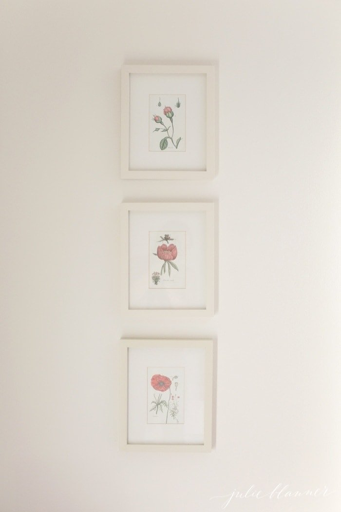 How to print and frame botanicals - easy diy art for your home