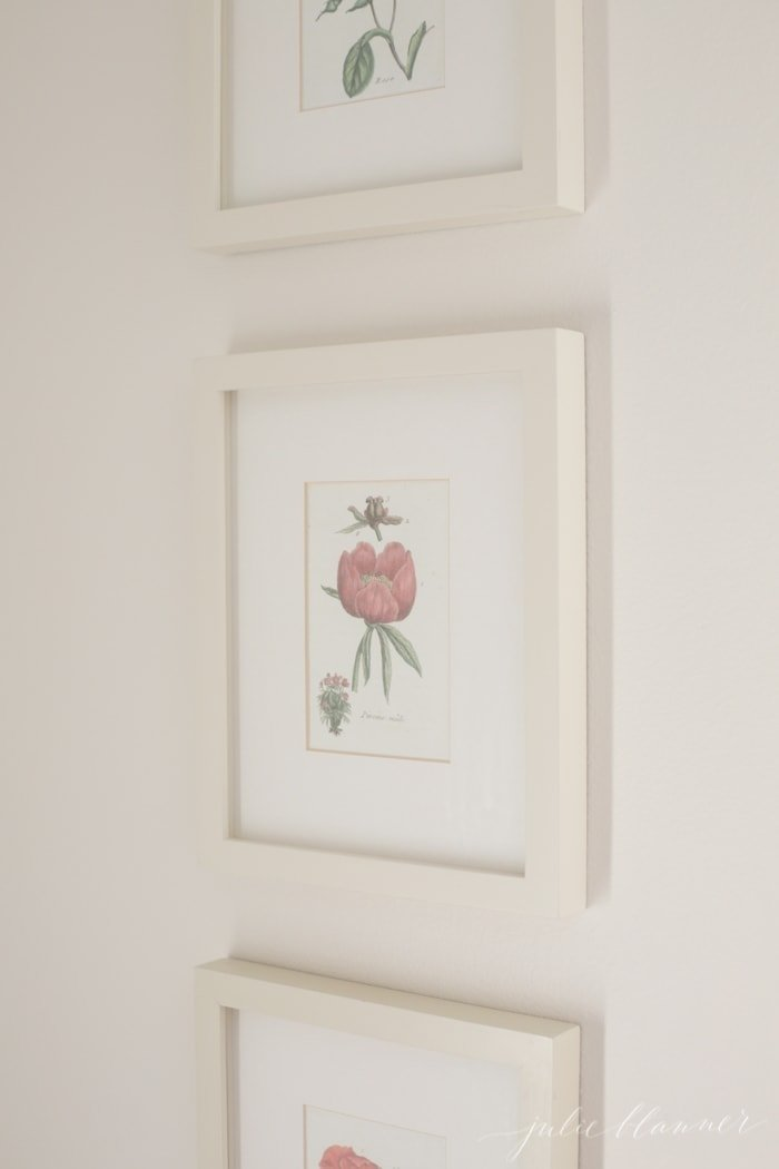 Create beautiful home decor with this botanical prints tutorial