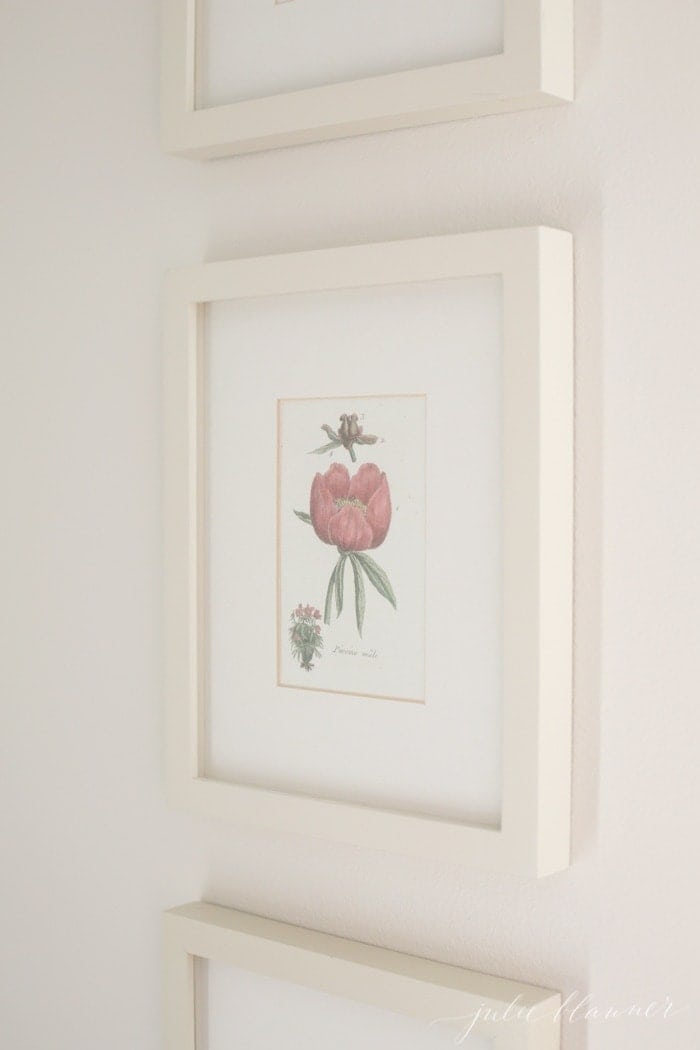 Easy art idea for home - diy botanical prints