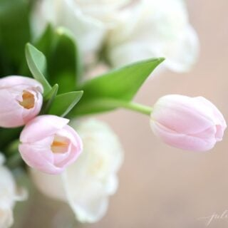 A fresh arrangement of pink tulips and white roses in a clear glass vase.