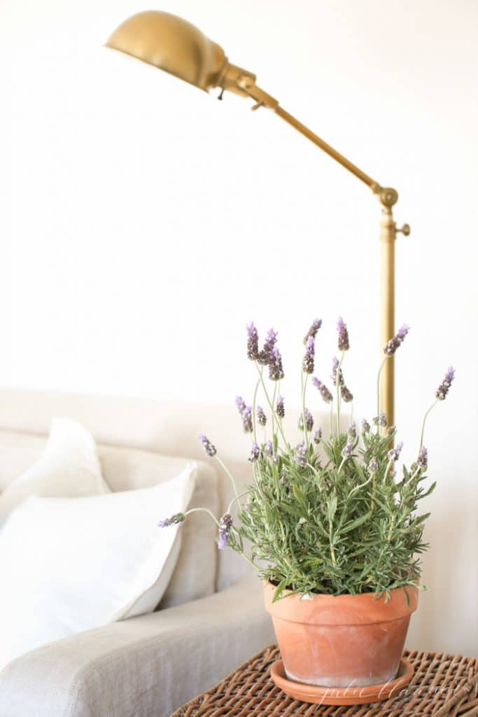 How to decorate for spring | the perks of a neutral home