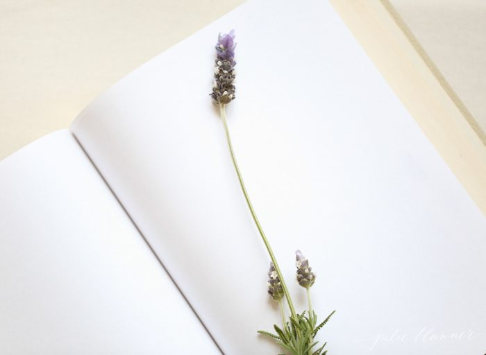 Learn how to press flowers to create beautiful diy pressed botanical wall art