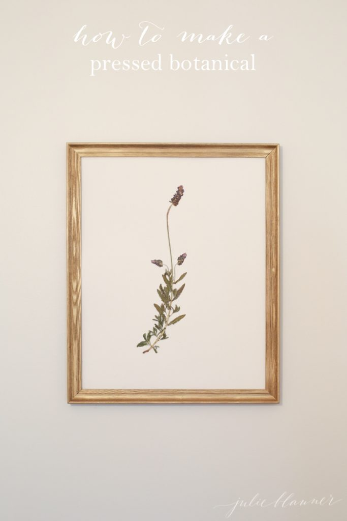How To Make Pressed Botanical Wall Art