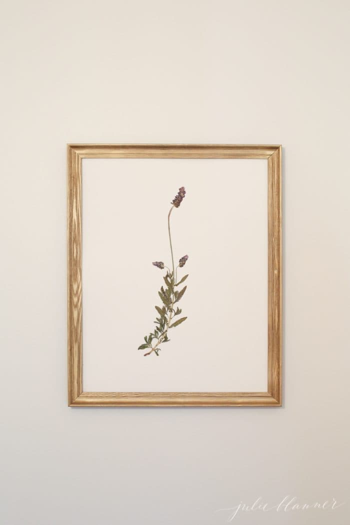 Beautiful DIY pressed botanical wall art