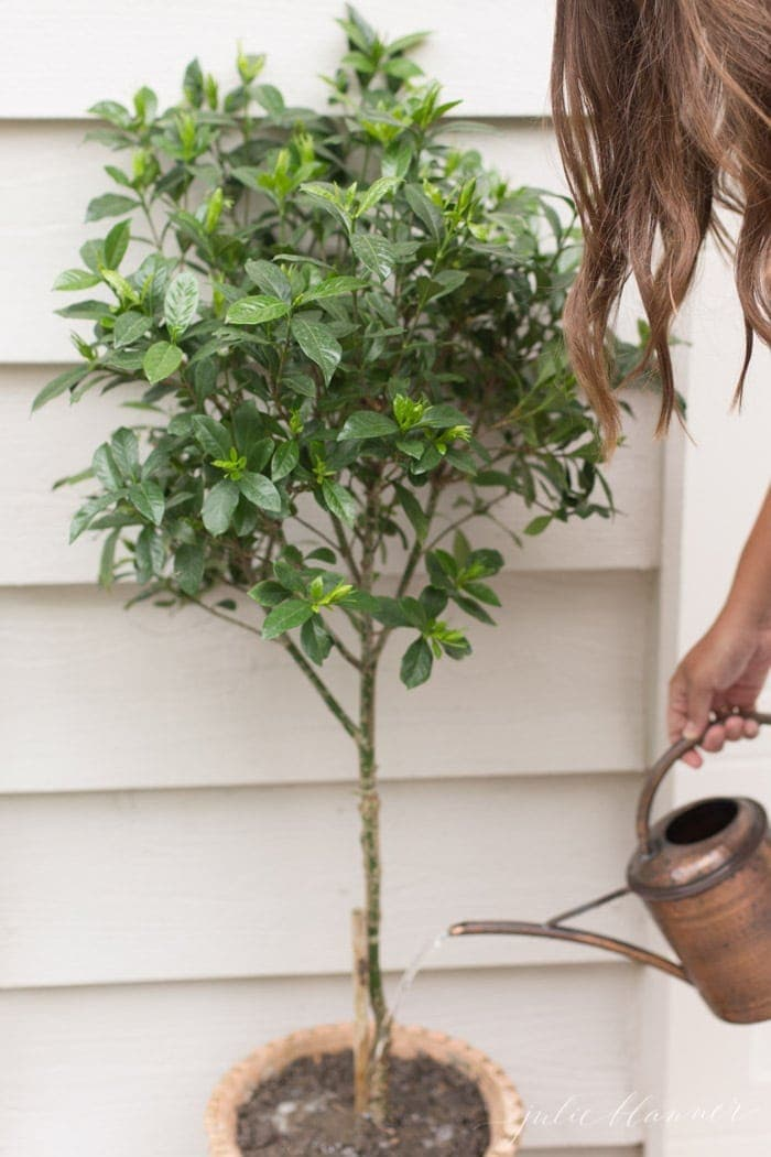 outdoor decorating ideas - garage design