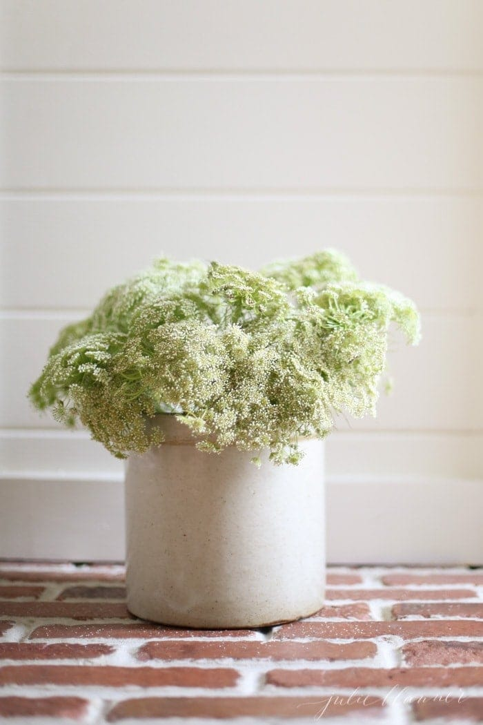 Queen Anne's lace in a crock | fall decorating