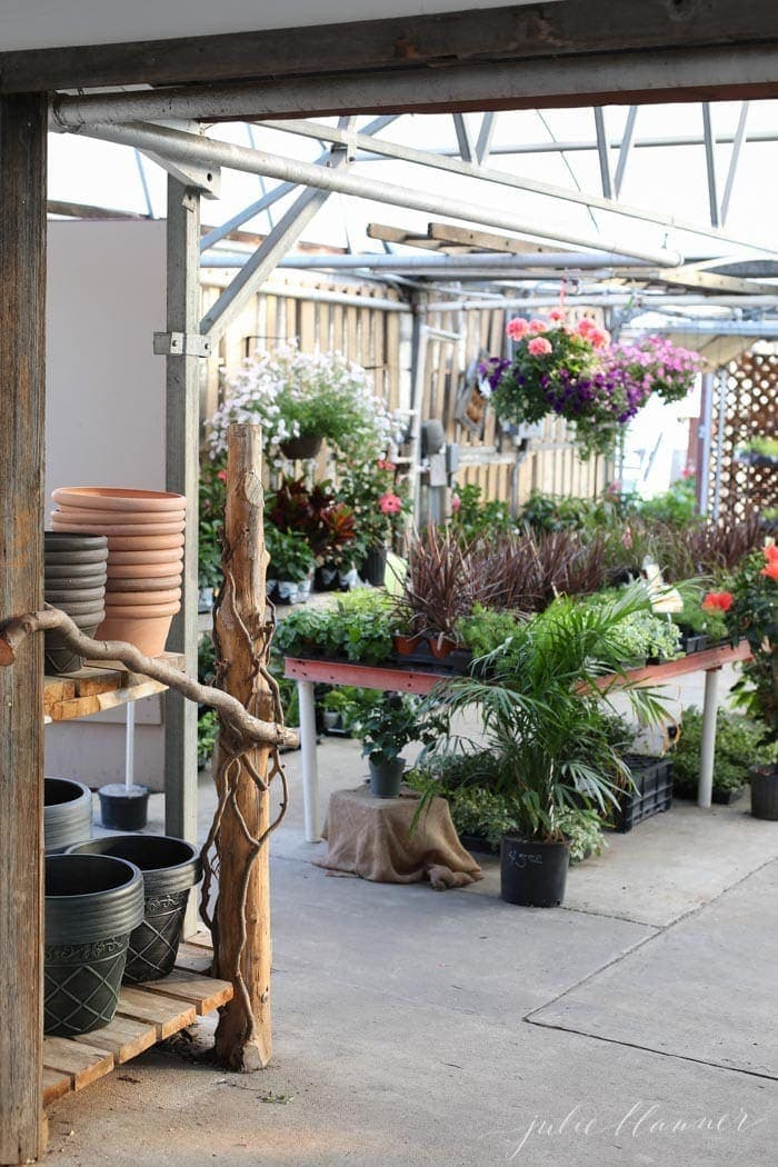 A garden center filled with beautiful potted plants and annuals.