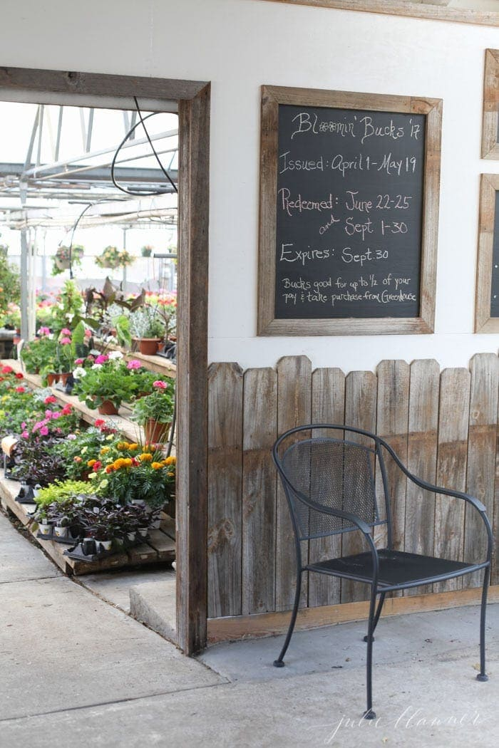 beautiful garden container ideas at a nursery, chalkboard sign in foreground