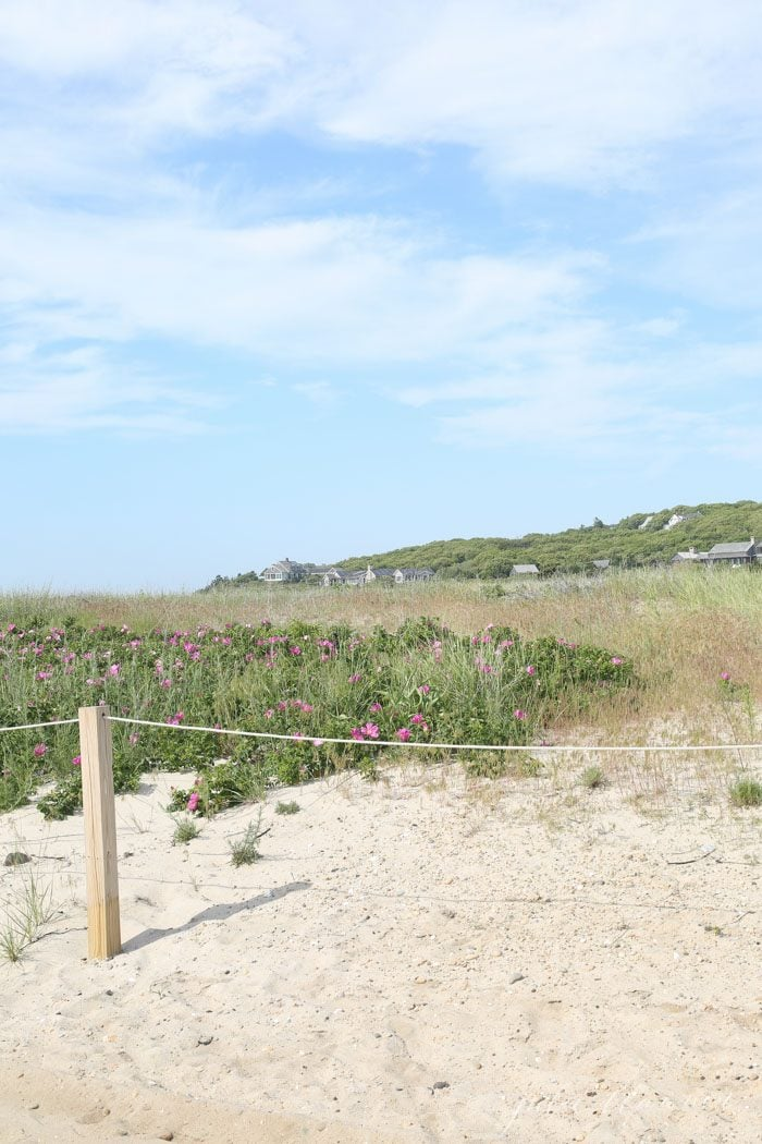 Martha's Vineyard - the perfect spot for family vacations or weekend getaways. With all of these Martha's Vineyard things to do, you'll never be bored!