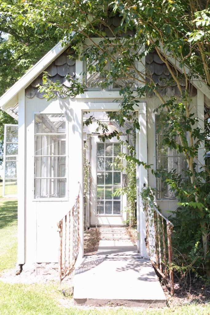 white rustic greenhouse with vines