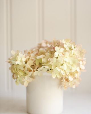pink hydrangeas in creamware with beadboard backsplash