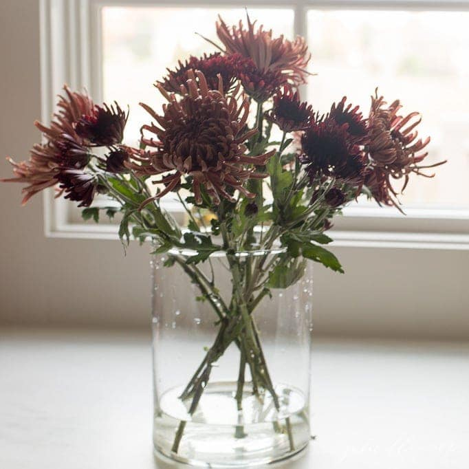 spider mums in fall mum centerpieces