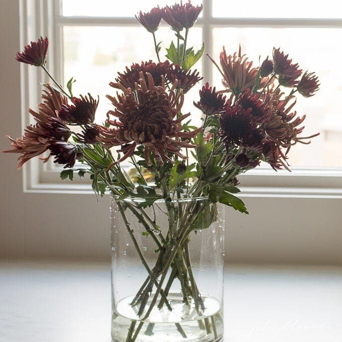 entertaining blogger shares step by step instructions to how to make a fall mum centerpiece