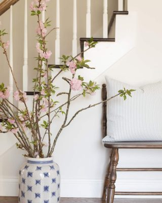where to find cherry blossom branches
