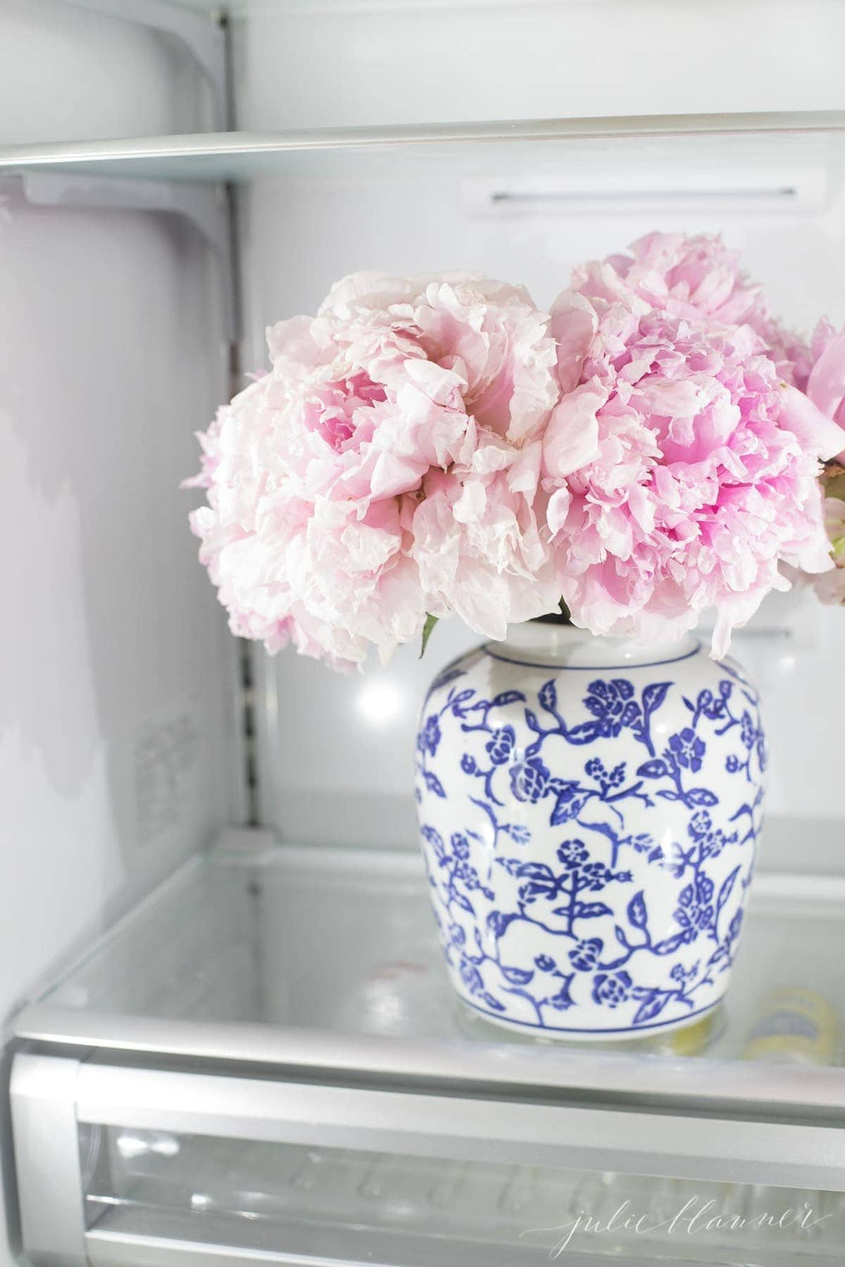A vase of pink peonies inside a refrigerator to extend their life.