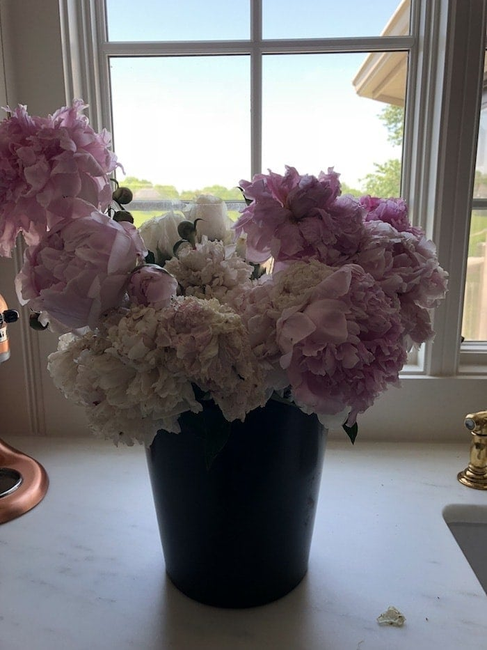 A bucket of wilted peonies in order to show how to bring peonies back to life