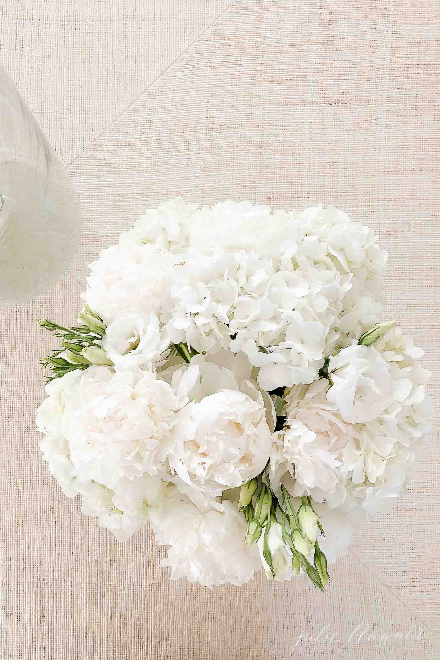 An all white hydrangea centerpiece on a textured neutral surface.