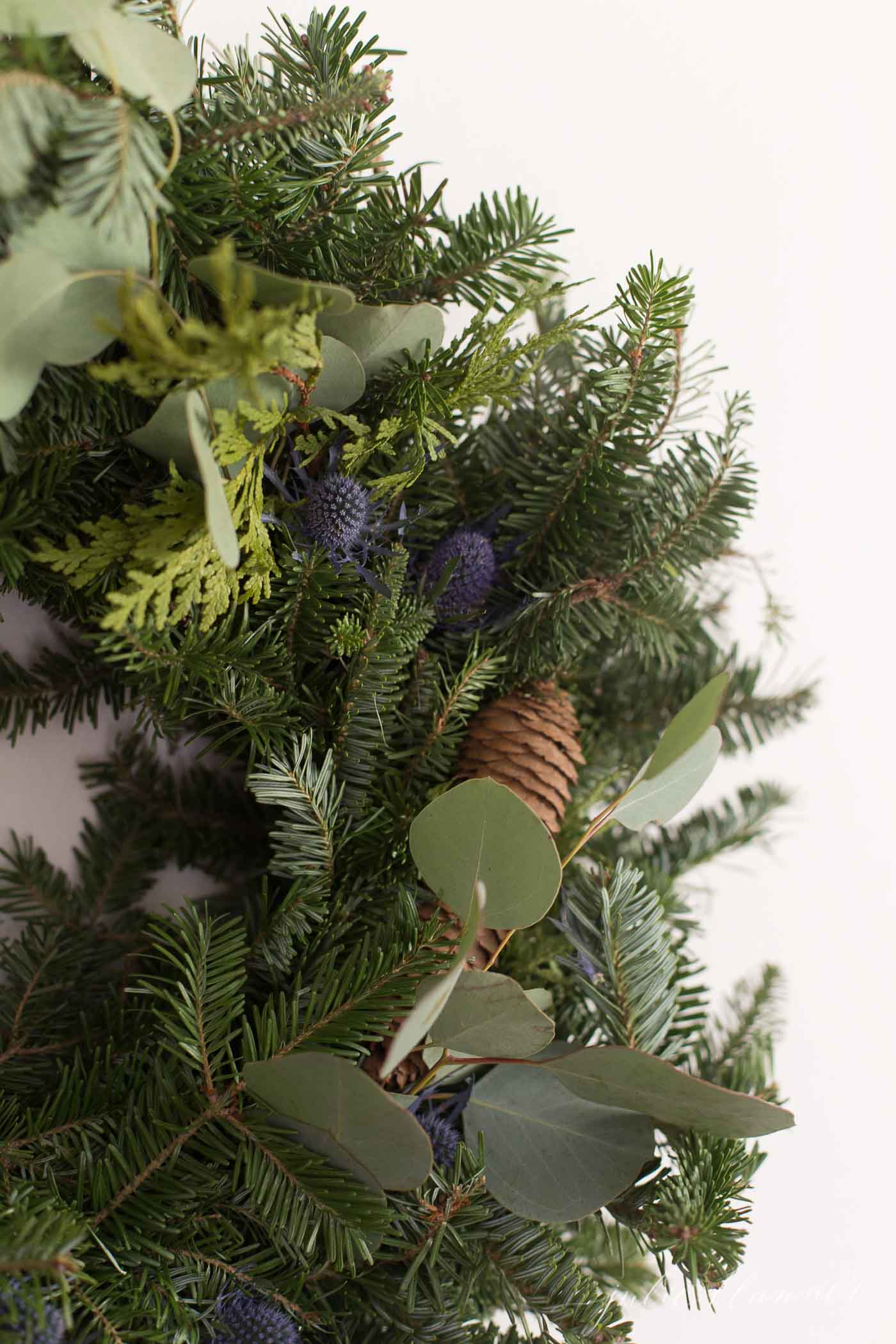 A close up of a fresh evergreen christmas wreath.