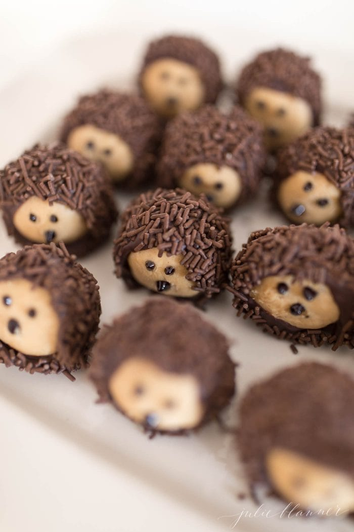 buckeye recipe looks like woodland hedgehog