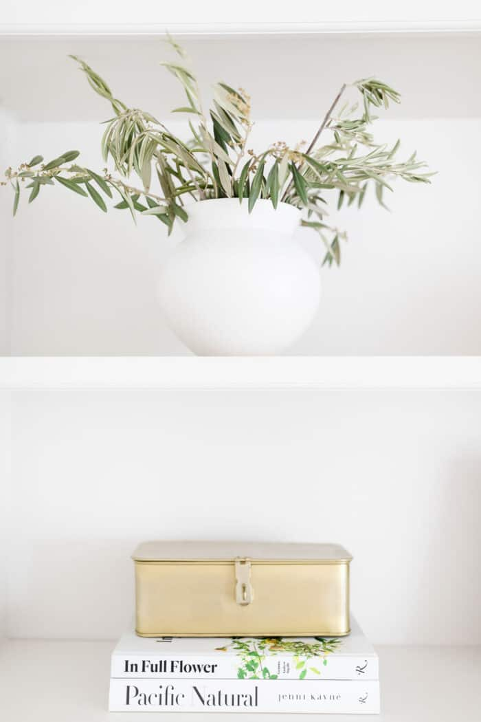plant and books on shelves