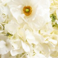 Trader Joe's Flowers (Grocery Store Flowers)