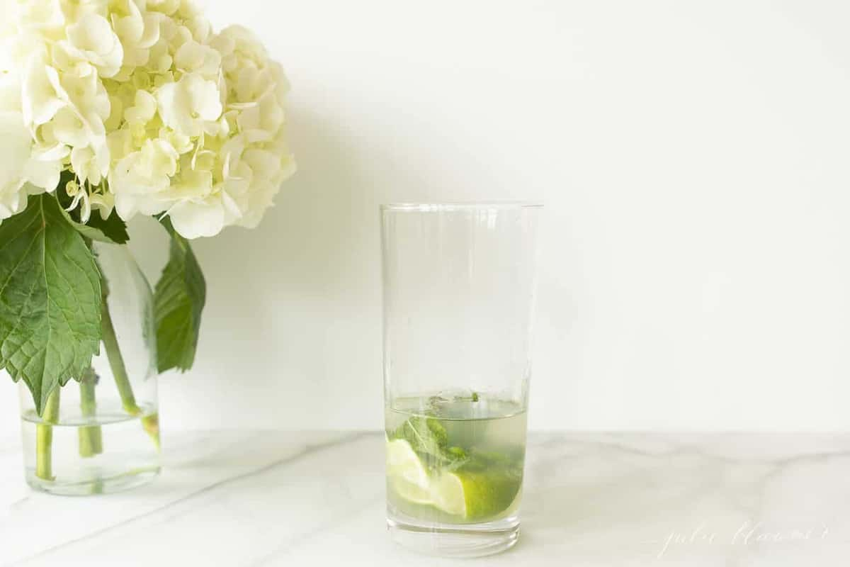 vodka lime and mint in a mojito glass