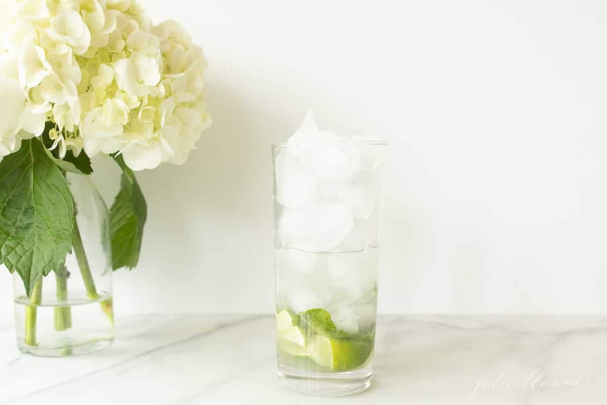 glass filled with ice lime mint and vodka