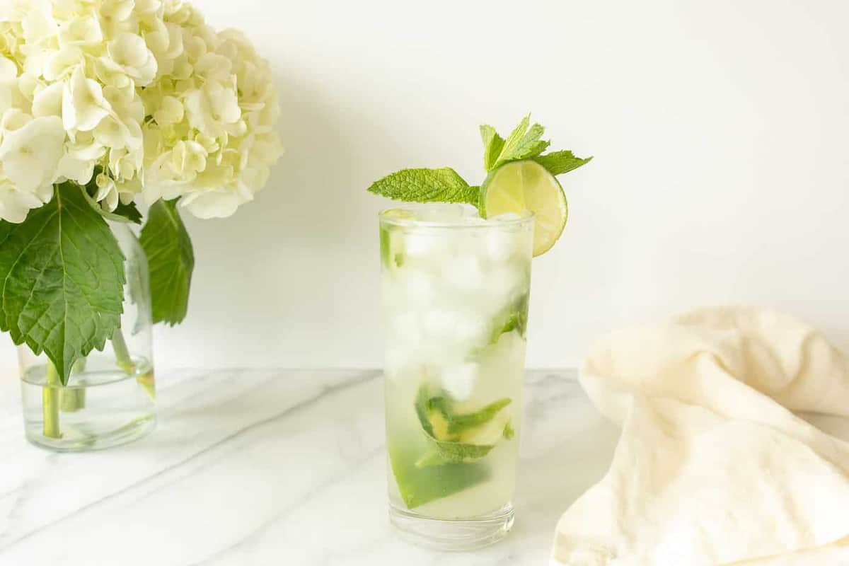 mojito with vodka in a glass garnished with lime slice and mint sprig