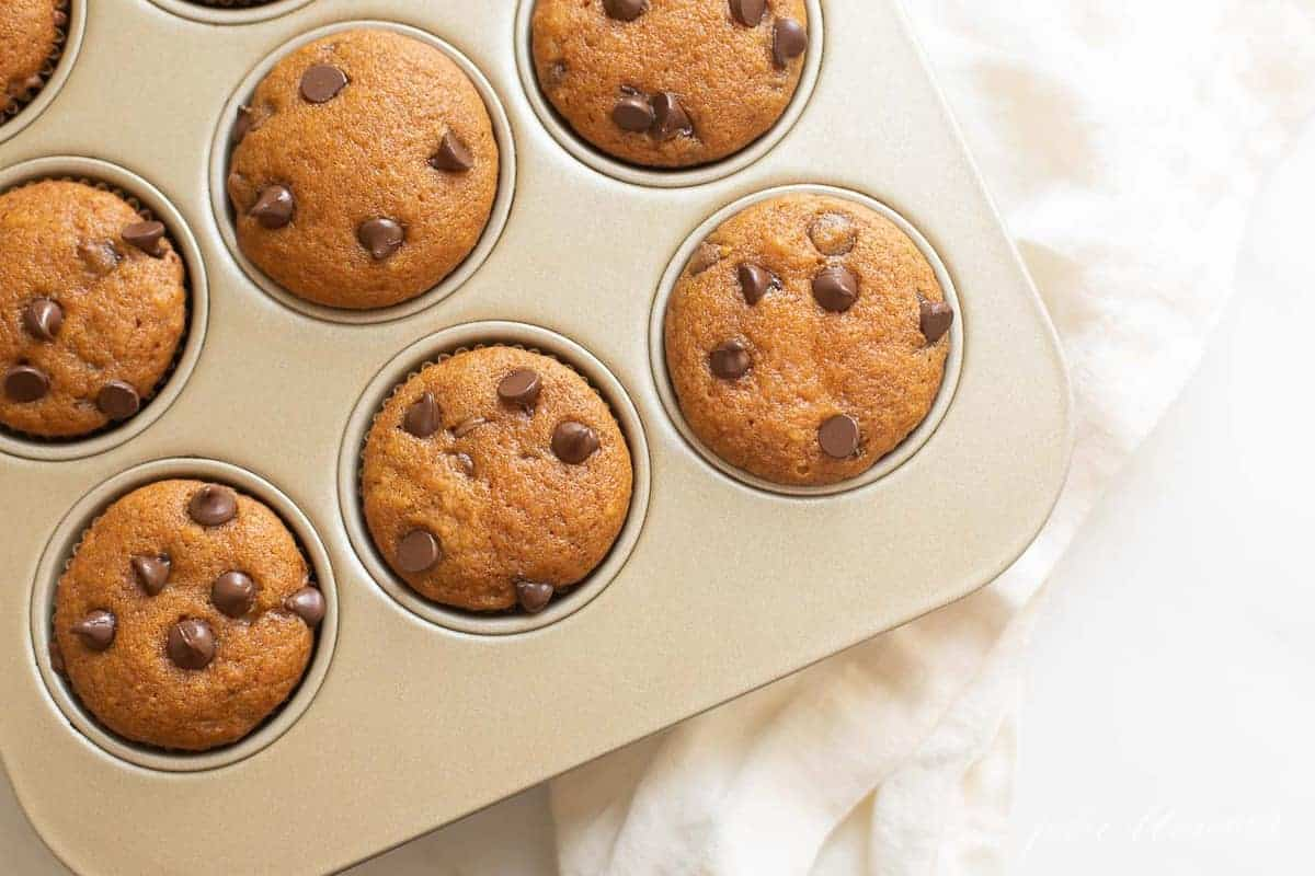 pumpkin chocolate chip muffins in a muffin tin on a counter