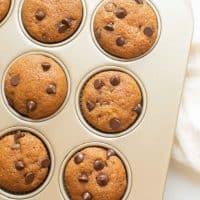 Best Pumpkin Chocolate Chip Muffins