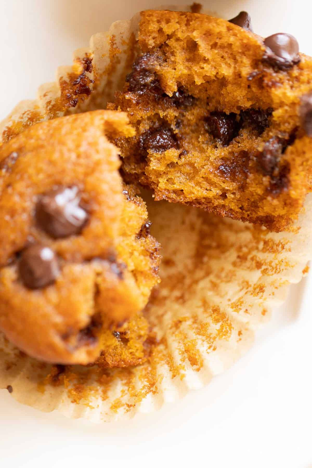 pumpkin chocolate chip muffin split in half