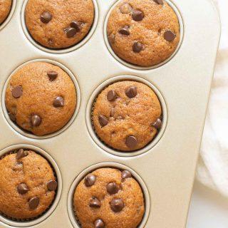 pumpkin chocolate chip muffins in a muffin tin