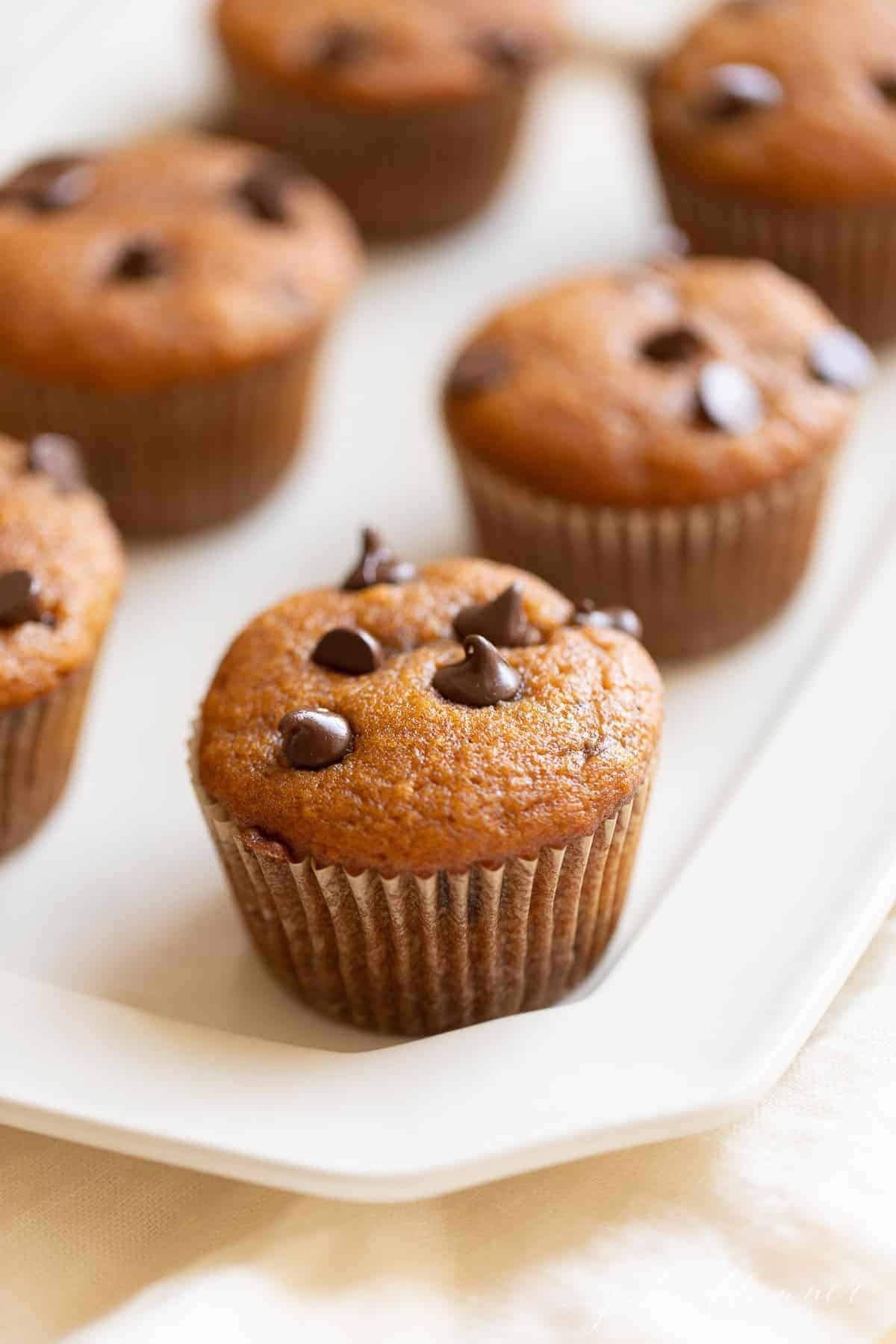 muffins made with pumpkin and chocolate chips on a platter