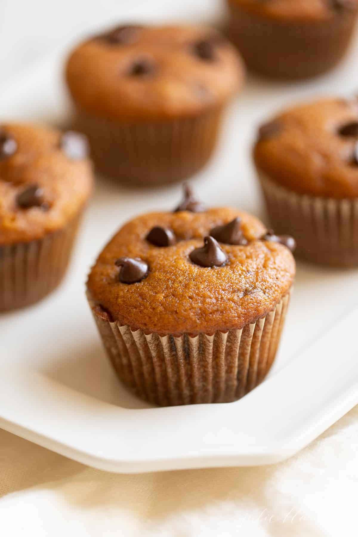 pumpkin muffins with chocolate chips on top on a platter