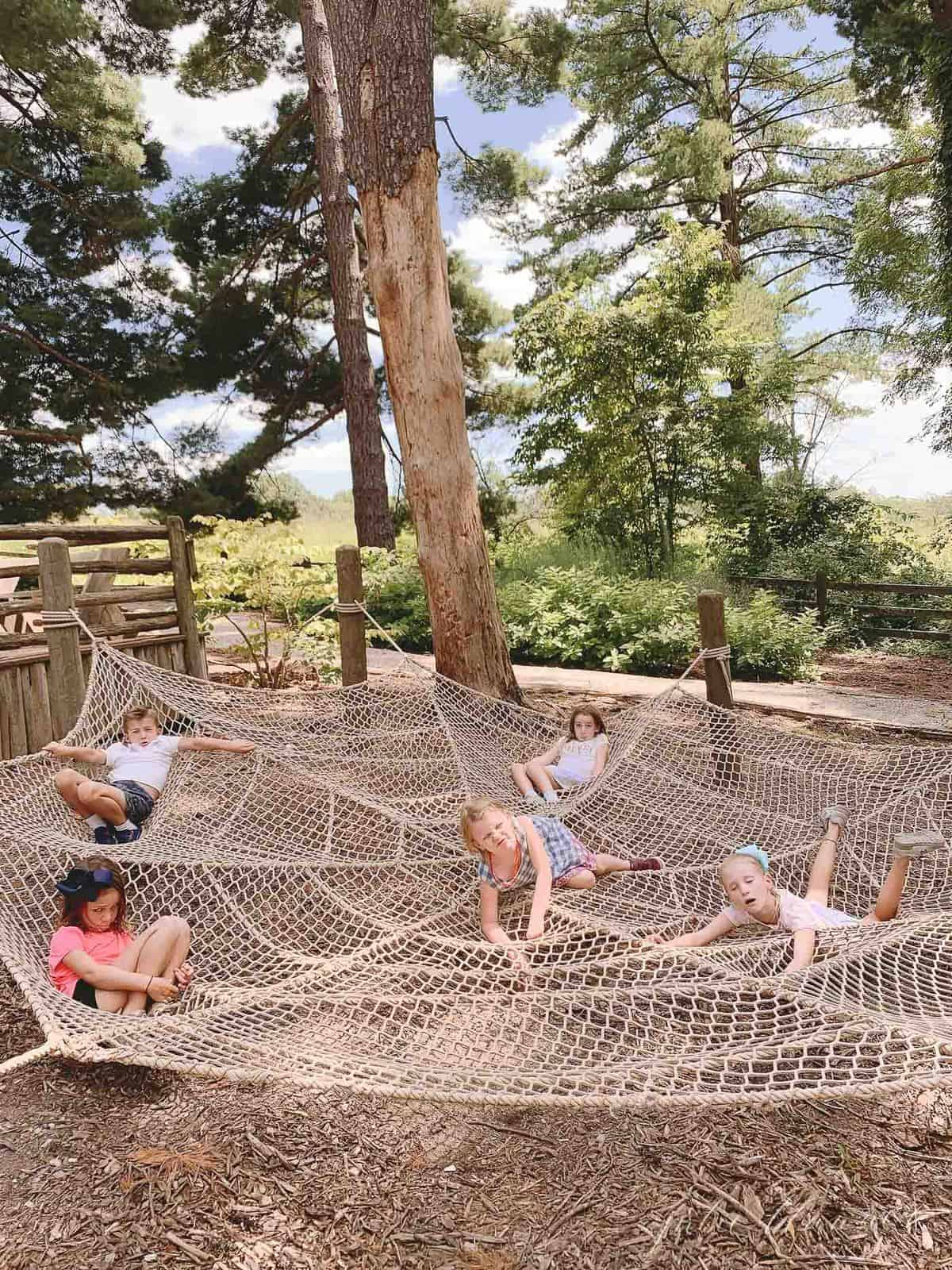 Giant play spider web for kids in St. Louis