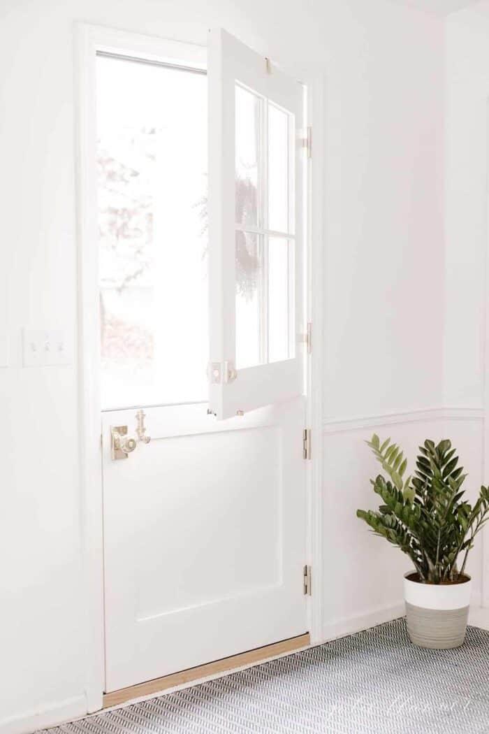 A zz plant in a gray pot by a dutch door in a white room.