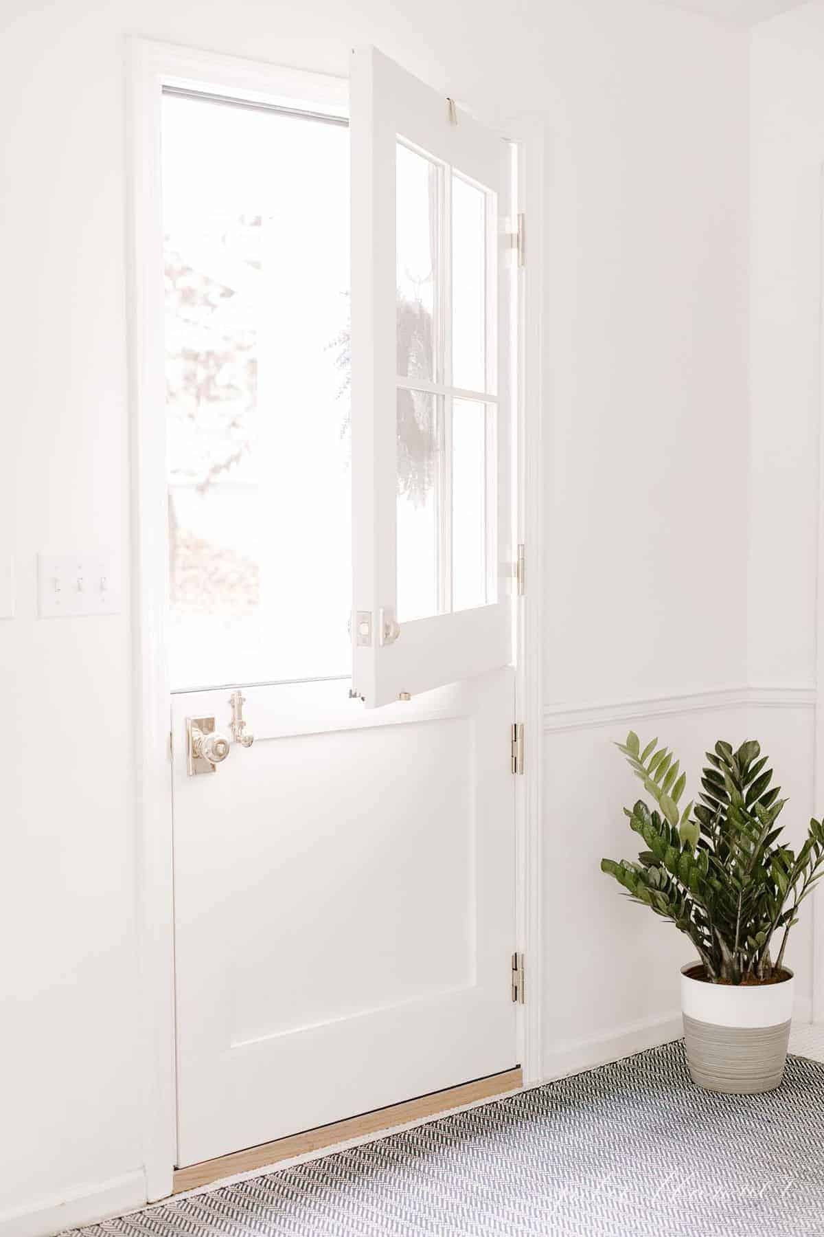 A white exterior dutch door, top open, with a Zamioculcas Zamiifolia on the floor by the door. #zzplant