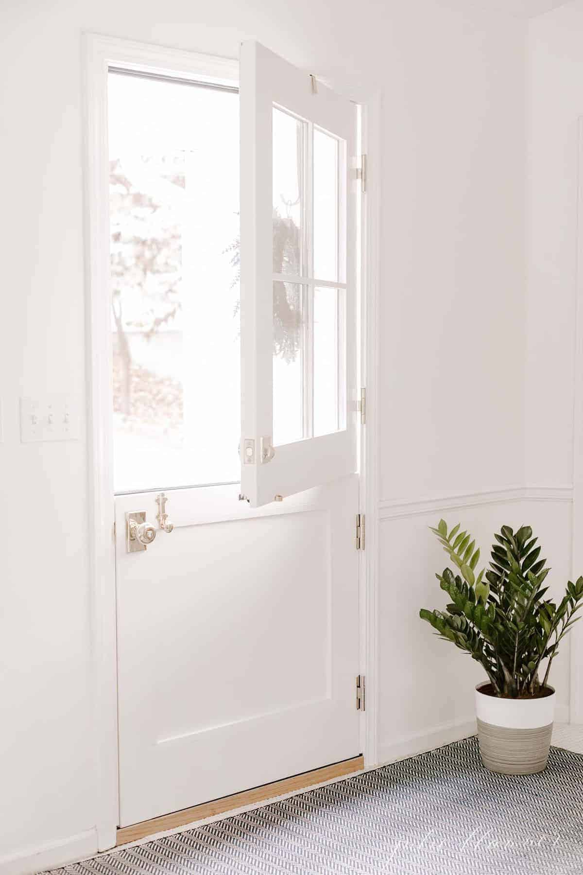 A white exterior dutch door, top open, with a zz plant on the floor by the door.
