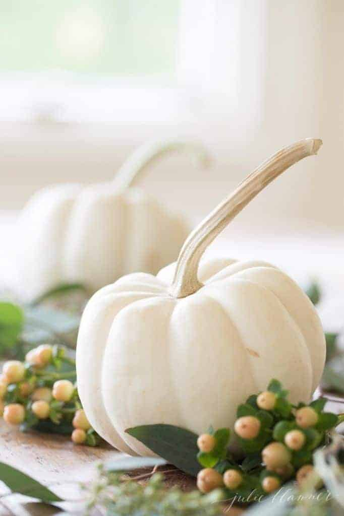 Mini white pumpkins and berries on a table.
