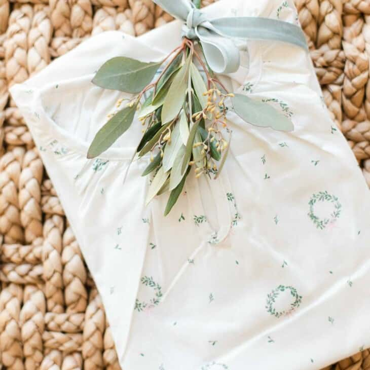 christmas pajamas on hyacinth with greenery