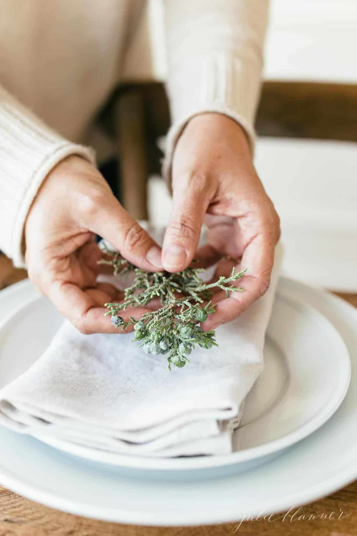 hands holding juniper putting it on a place setting