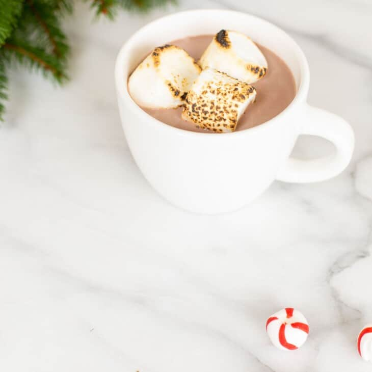 Hot chocolate with peppermint schnapps in a white mug, greenery and peppermint candies to the side.