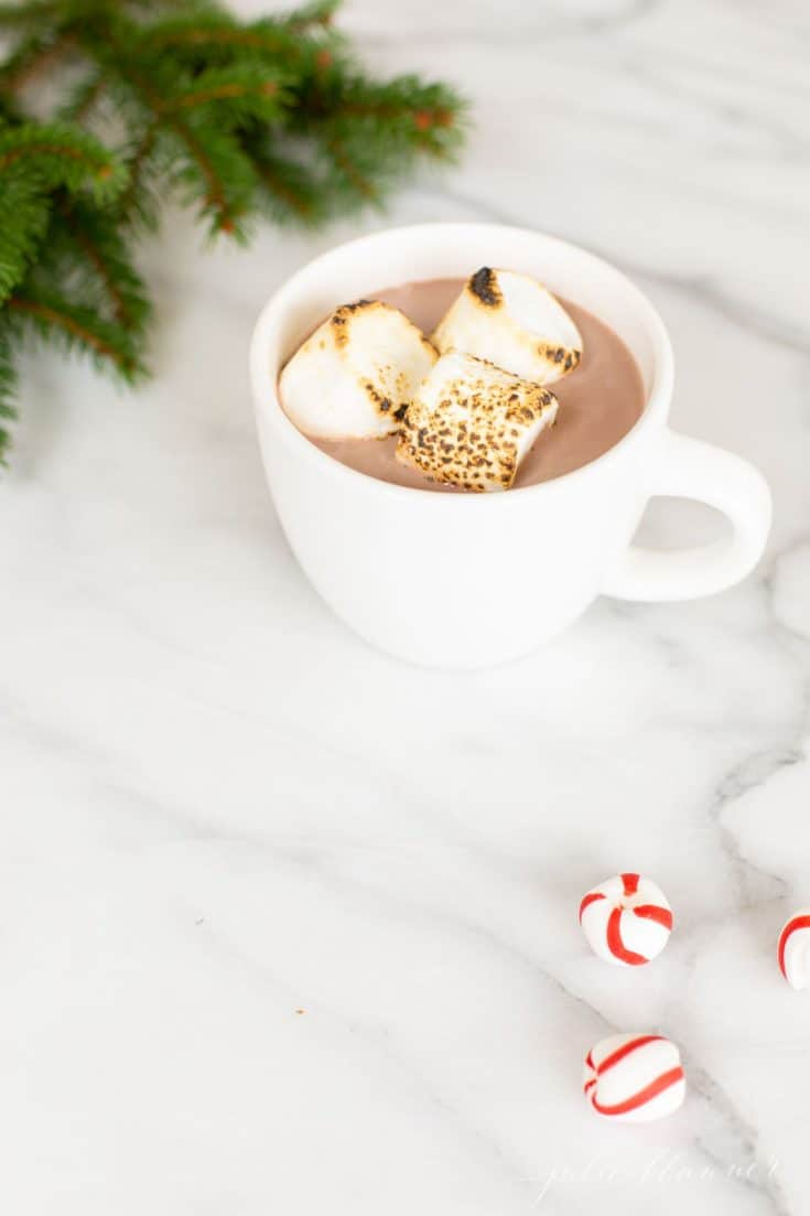 Spiked Hot Chocolate with Peppermint Schnapps