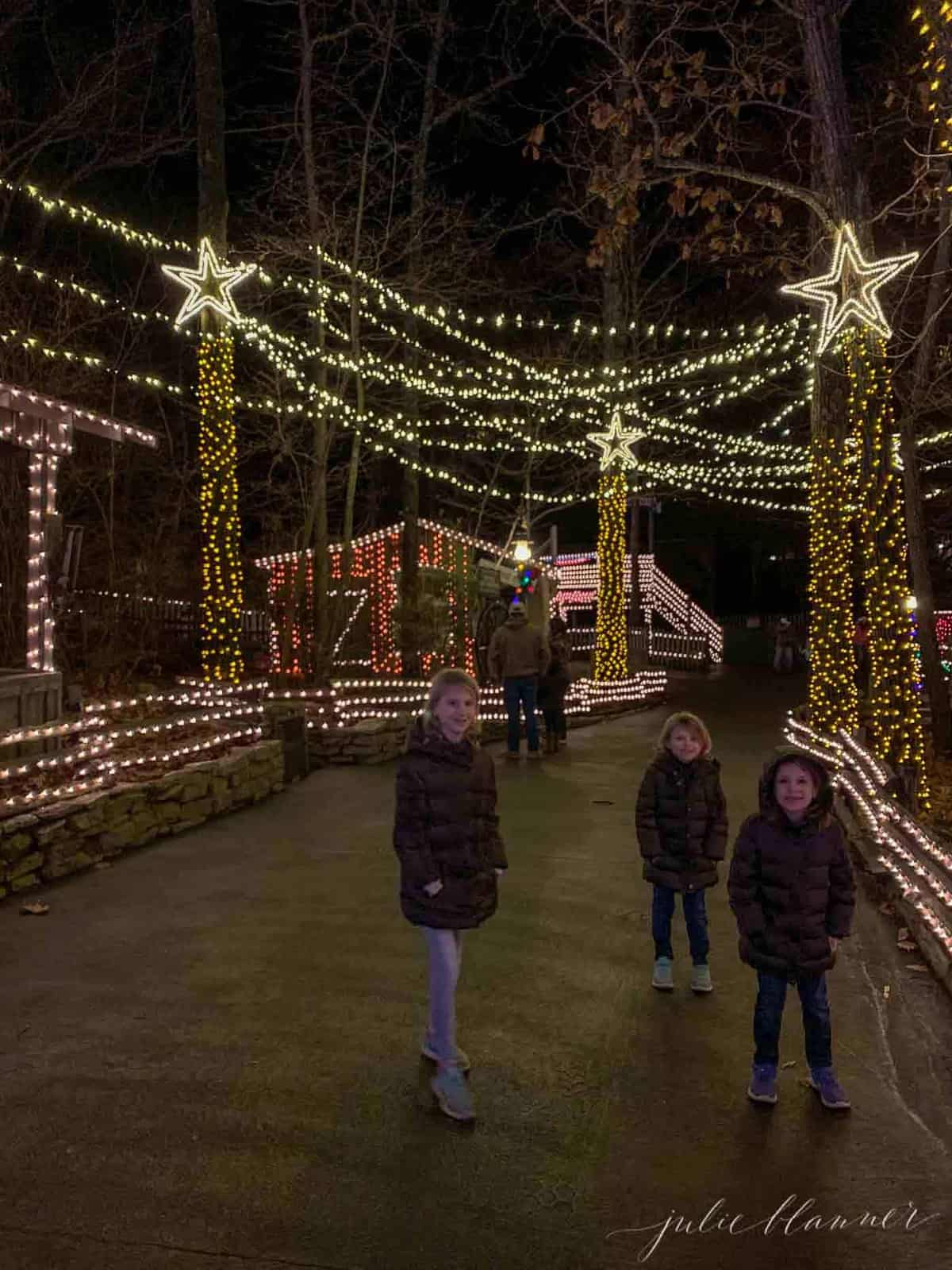 christmas lights draping over walkway