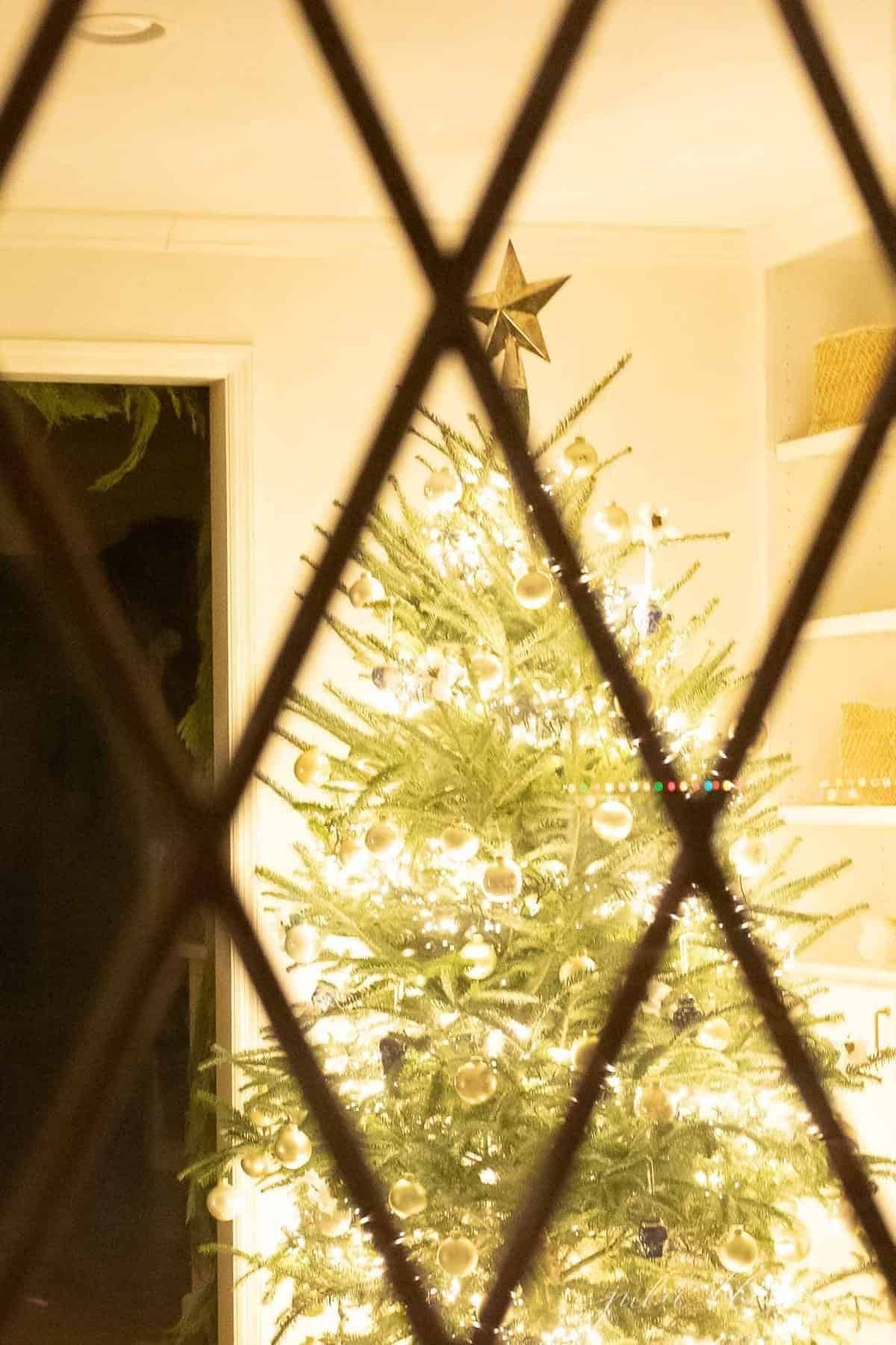 The view of a Christmas Tree from a window.