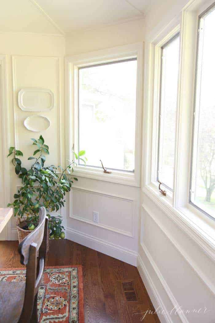 A white room with lots of windows, potted dwarf lemon tree in a basket.