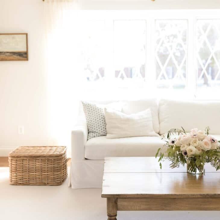Minimalist living room with white sofa, wood coffee table.